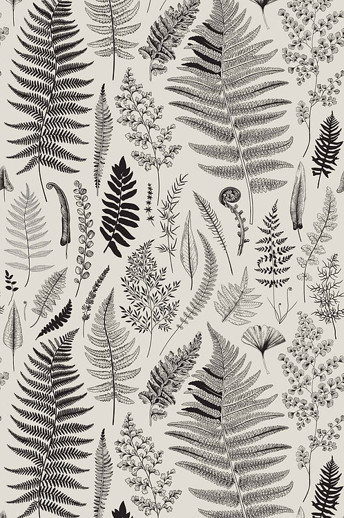 Botanical | nature study