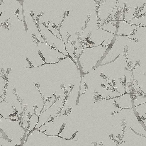 Heath Banksia   pewter
