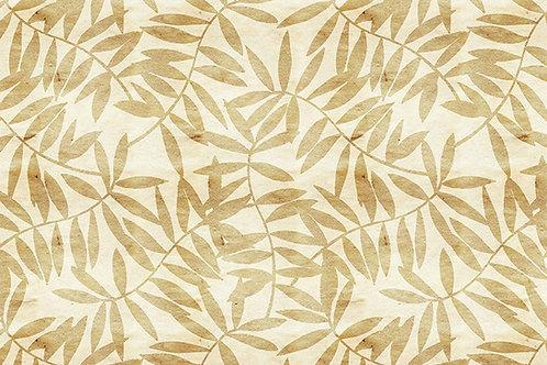 Leaves   frances