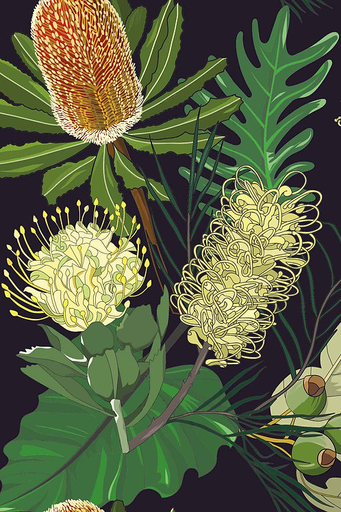 Botanical   why wattle