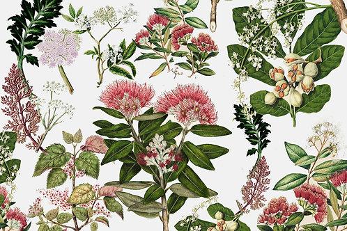 Botanical | saying goodbye
