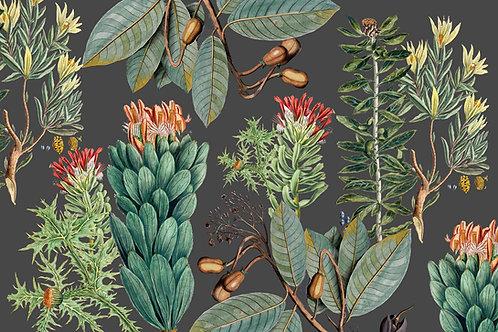 Botanical | cedarburg in gray