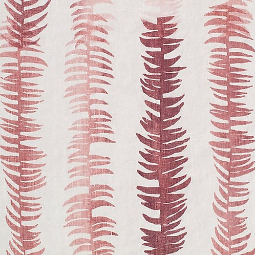 Frond   dust rose