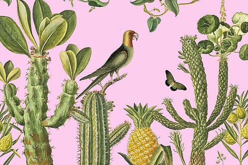 Botanical | man hunt in pink