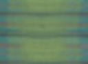 DOT - Acaraho YP16007.png