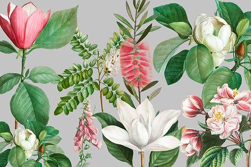 Botanical | pretty in pink