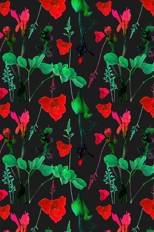 Floral | frannie
