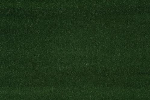 Marlow Velvet | spruce