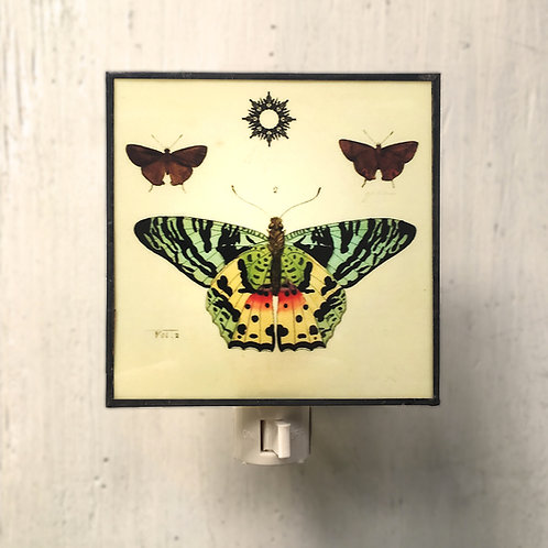 Colorful Butterfly - Night Light