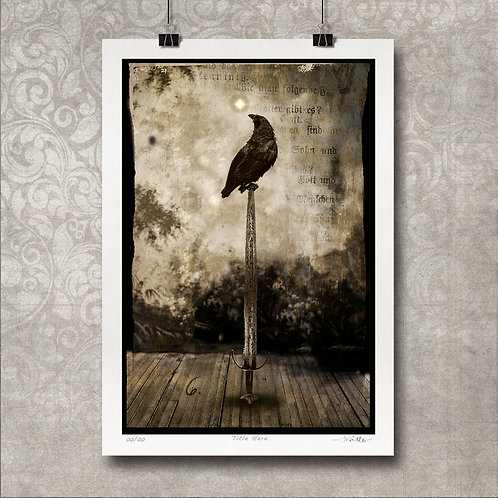 Raven on Sword - Limited Edition Print