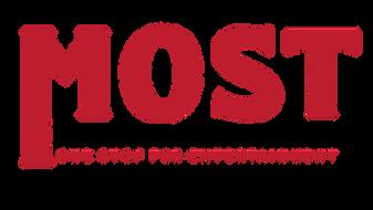 MostPreciousPromotes.com Presents SEO Solutions with Blogging