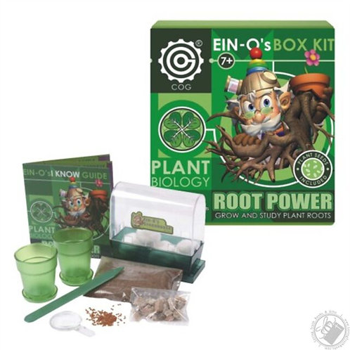ROOT POWER - EIN-O´s BOX kit