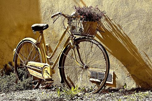 bike-190483_1920-min.jpg