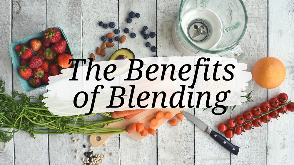 blenderized tube feeding meal preparation and blender.