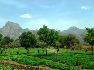 La Journée internationale de la Terre nourricière coïncide avec la signature de l'Accord de Paris