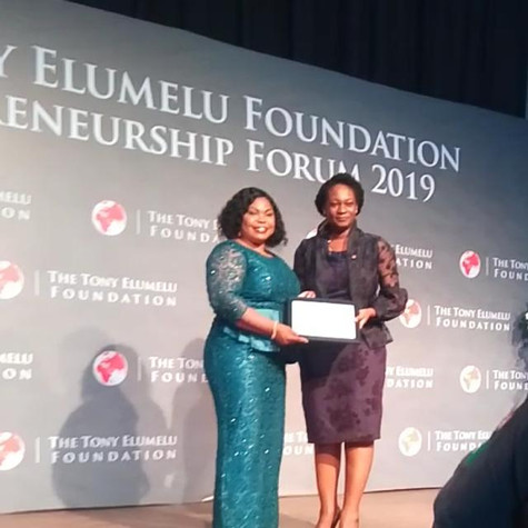 Most Impactful Tony Elumelu Entrepreneur Award