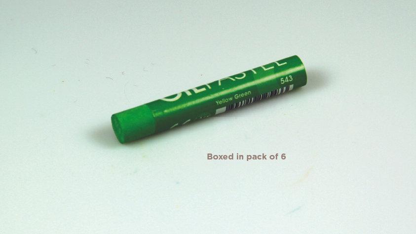 Mungyo Oil Pastel 6's  - Yellow Green 543