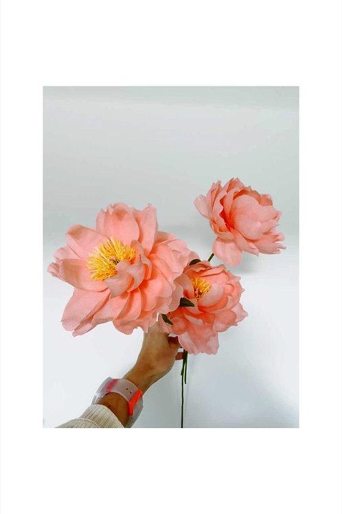 Pink Paper Peony by PaperFlowerMeadow