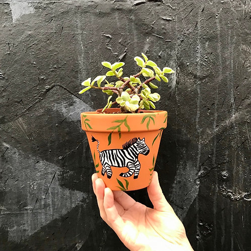 'Zebra' Hand Painted Terracotta Plant pot by Anna Soba