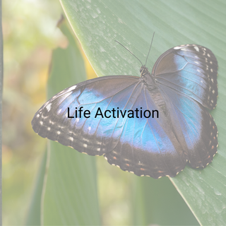 Life Activation