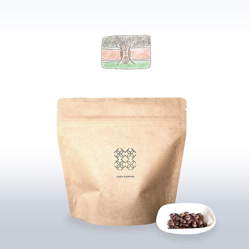 マウンテンケニア 豆