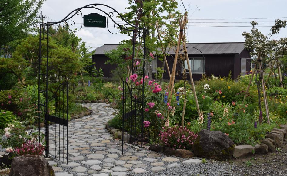 自然あふれるお庭