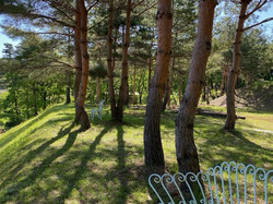 精霊の森ガーデンオープンガーデン