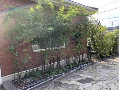工事日誌 Vol.15  花壇の改修工事