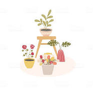 indoorhouse-plants-scandinavian-style-co