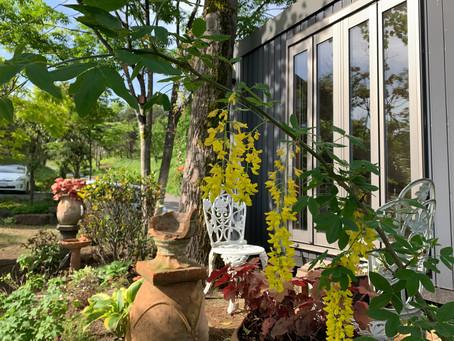 ガーデンセラピーのお庭づくり