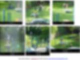 Notre problématique / ODD / Les posters de Gentil'ilot vert à la 1ère journée de CEVE-IDF