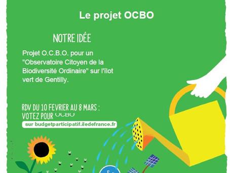 O.C.B.O. : vote du 10 février au 8 mars 2021 des Franciliens - Budget participatif de la Région  IdF