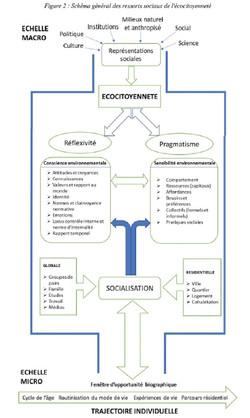 Ressorts sociaux eco-citoyenneté