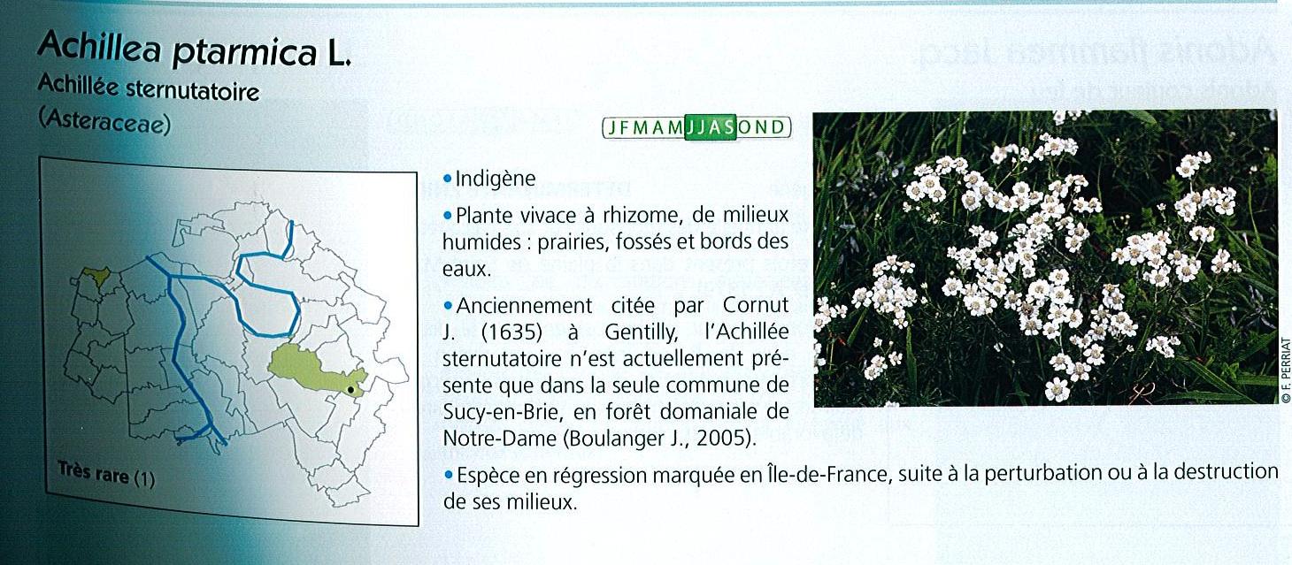 Extrait atlas de la flore