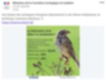 Ministère de la Transition écologique et solidaire. Silence des oiseaux