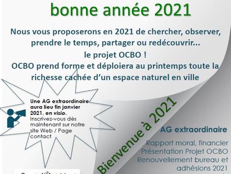 Voeux 2021, programme janvier 2021... Dernières photos, la terre est arrivée et en cours d'étalement