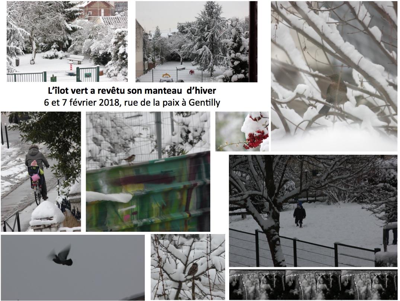 ilot_vert_hiver