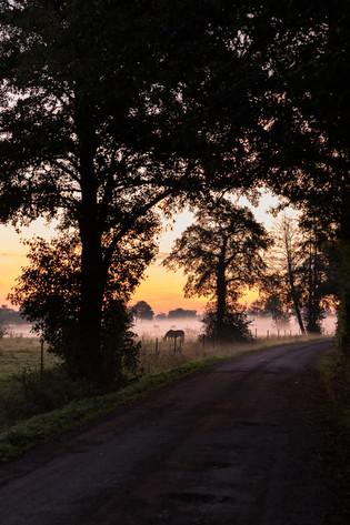 Schattenspiel zum Sonnenaufgang