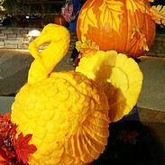 Turkey Pumpkin Carving