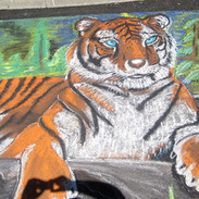 Chalk Drawing Tiger