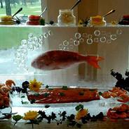 Frozen Fish in a Block