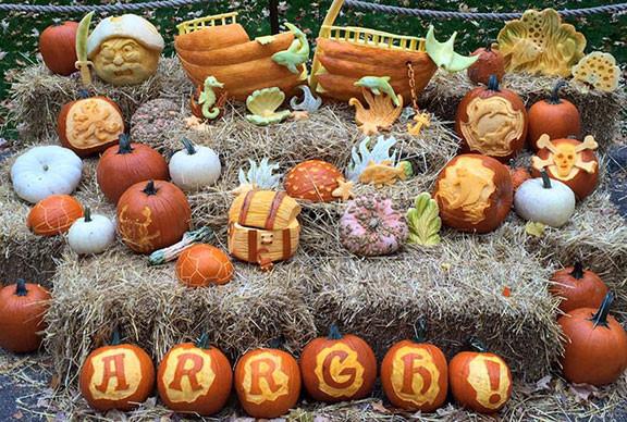 Pirate Pumpkin Display