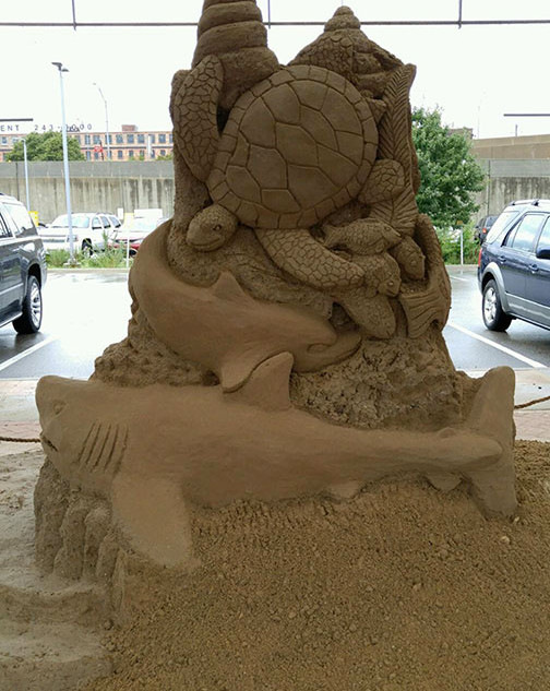 Shark and Turtle Sand Carving