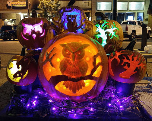 Owl Pumpkin Display