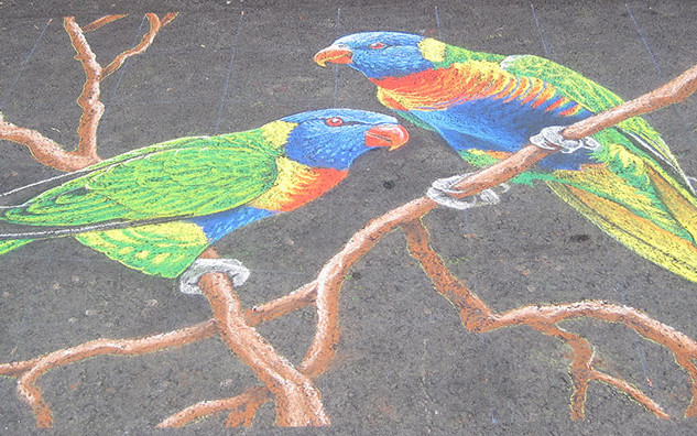 Chalk Drawing of Parrots