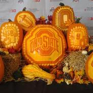Ohio State Pumpkin Display