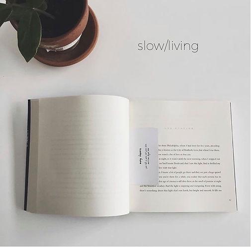 Slowliving spotify ai.jpg