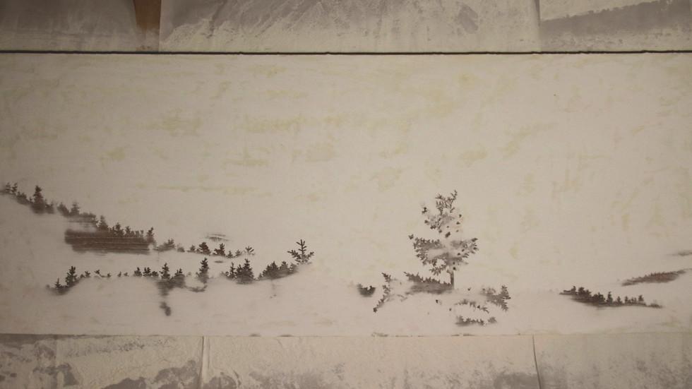 Forêt #2