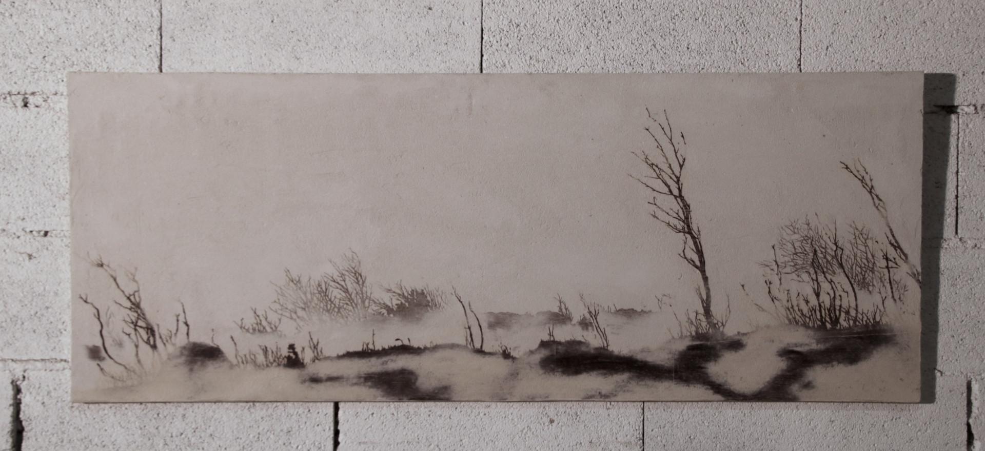 Forêt #4