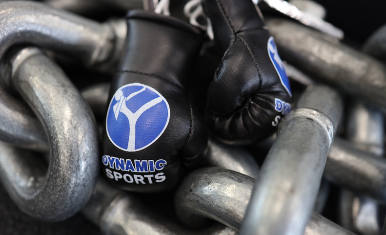 Dynamic Sports Basel MINI Boxhandschuhe